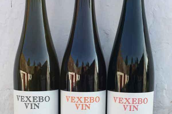 Vexebo Vin